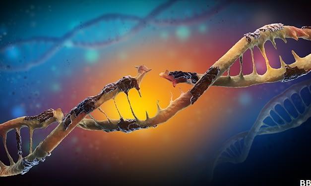 Condições abióticas, efeitos na degradação e no decaimento de DNA ambiental em ambientes límnicos
