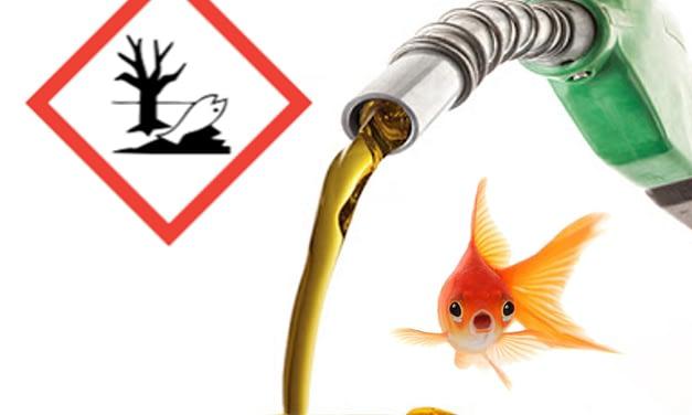Efeitos da exposição aguda de peixes a hidrocarbonetos derivados de petróleo