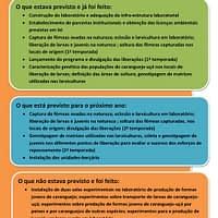 arelat (5)