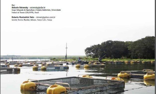Desafios para o sucesso da piscicultura em parques aquícolas