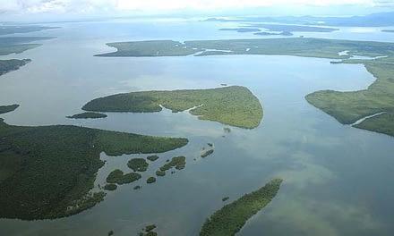 Os Conselhos de Meio Ambiente e Desenvolvimento na APA de Guaraqueçaba
