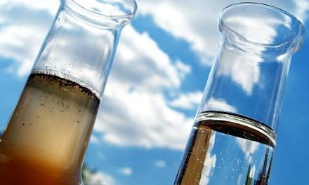 A relação entre o pH, a alcalinidade e a amônia na piscicultura