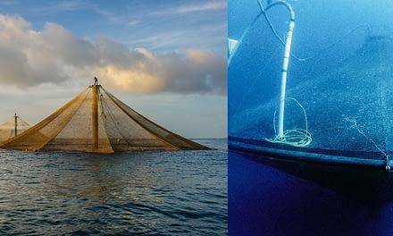 O futuro depende da aquicultura em águas abertas