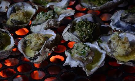 Legislação para produção e comercialização de ostras no litoral paranaense