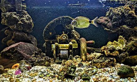 Faça você mesmo: Filtro para aquários