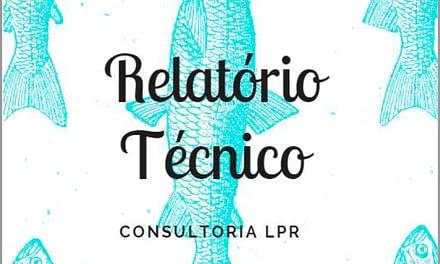 Consultoria LPR